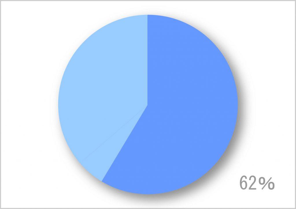 Google_ストリートビュー_円グラフ_02