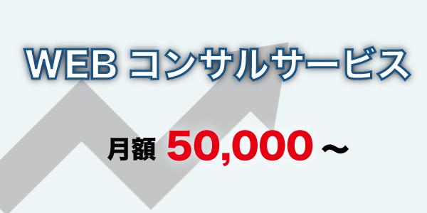 WEBコンサルサービス_月額50,000~