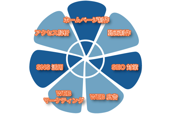 7つの特徴